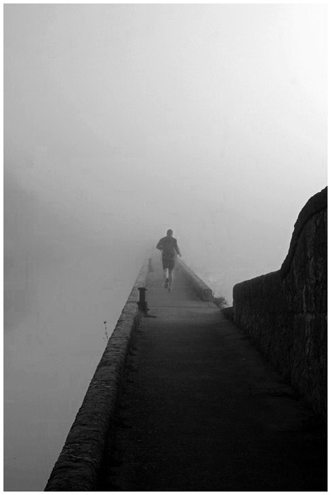 Dans le brouillard (3)