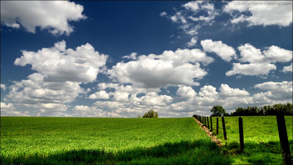 En route vers les nuages!
