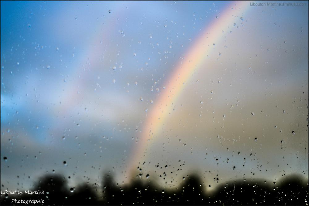 Après la pluie ....Le beau temps