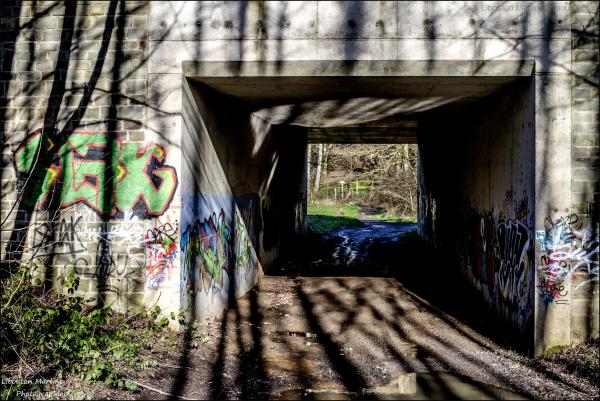 Le pont revêt son habit d'ombres et de lumières