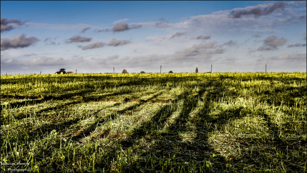 Le travail au champs