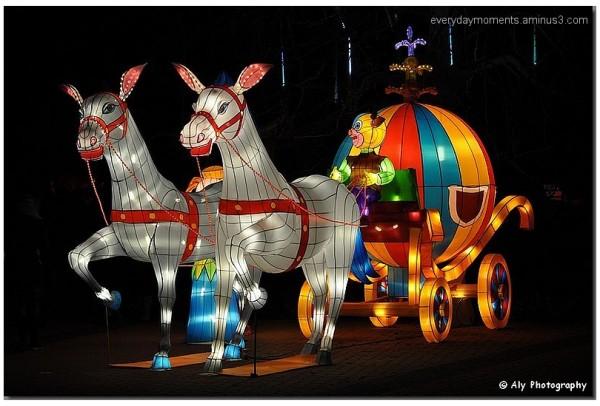 Confucius China Light Festival, Nikon D5000