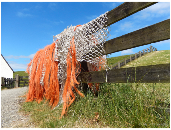 Nets drying