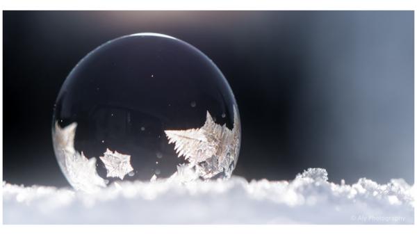 beginning frozen soap bubble