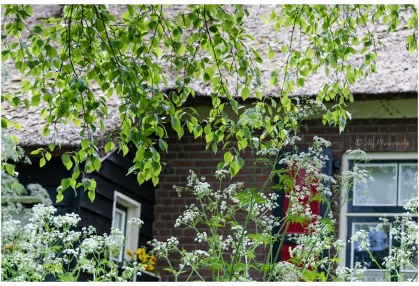 Giethoorn Holland Venice 2