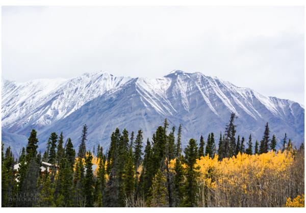 mountains Yukon Canada
