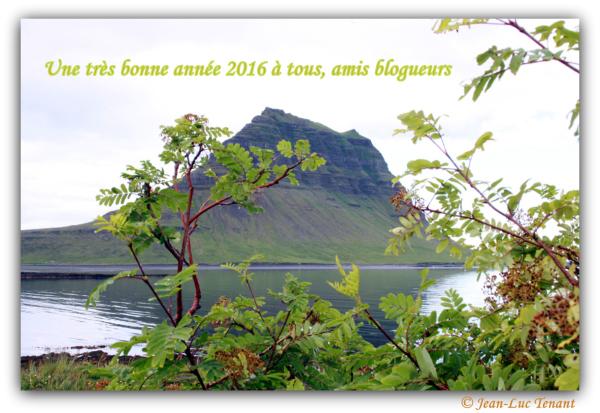 Bonne et heureuse année!