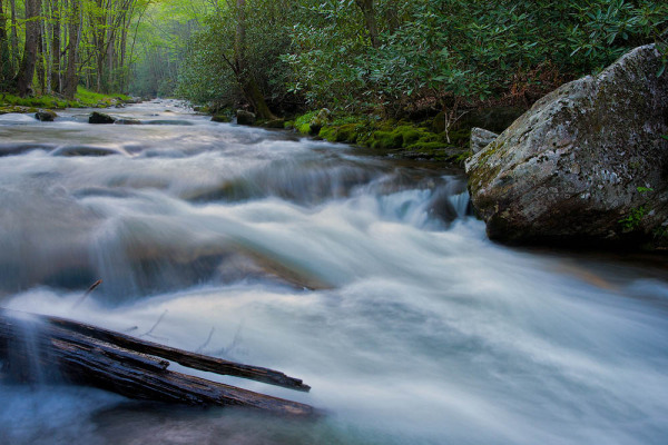 Straight Fork, Smoky Mountains