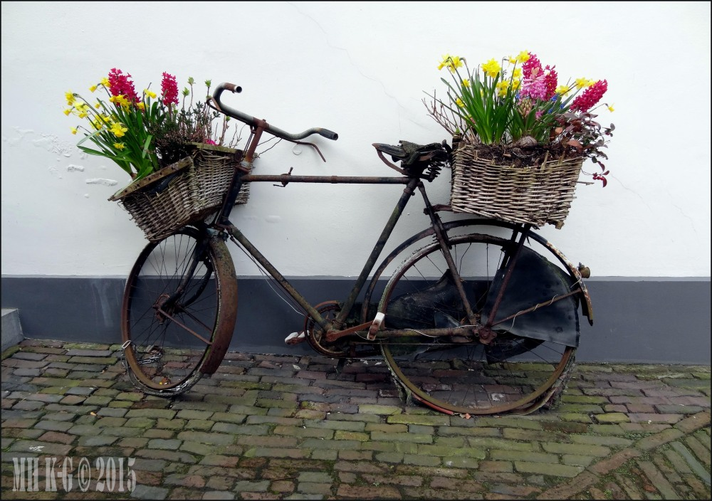 Spring in town