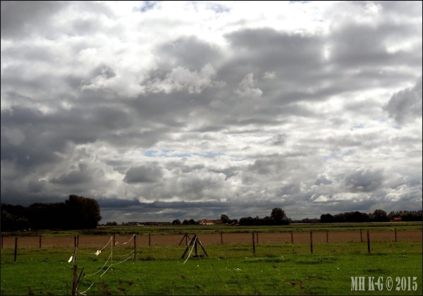 Voornse polder