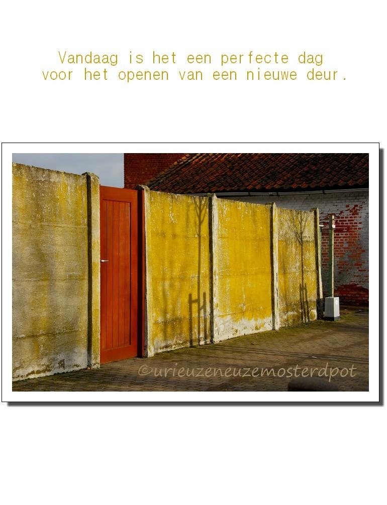 New door