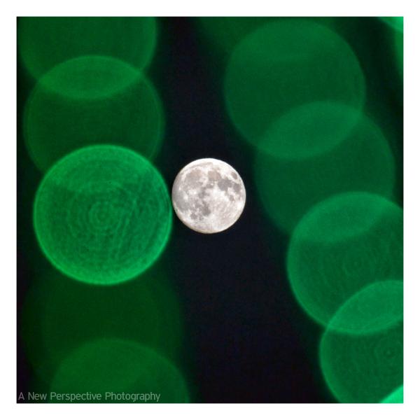 Moon and Christmas Lights