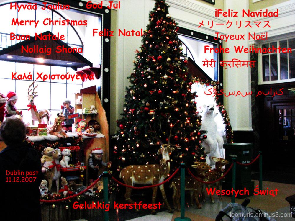 Joulukortti  - Chrismast card