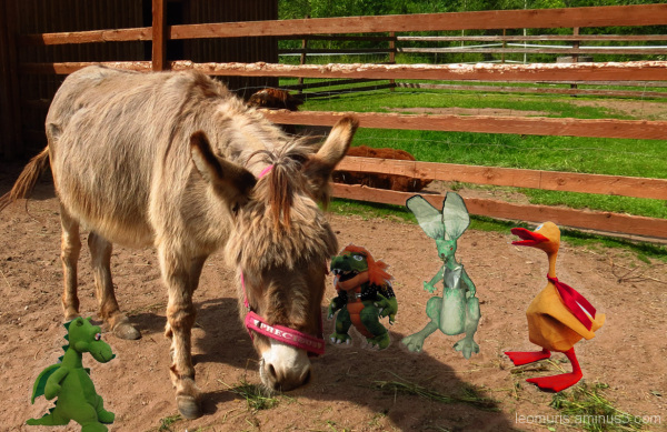 donkey and friends
