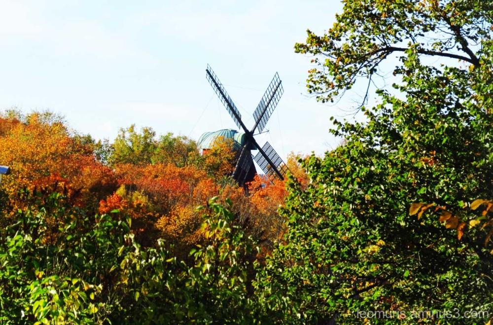 Mill and fall colors