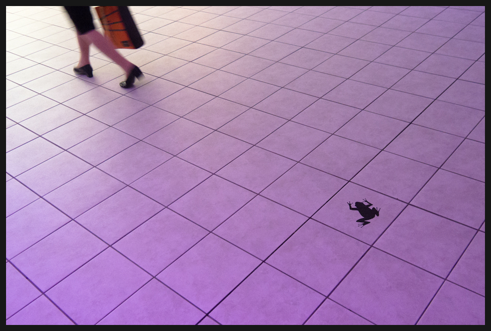 Stepped frog