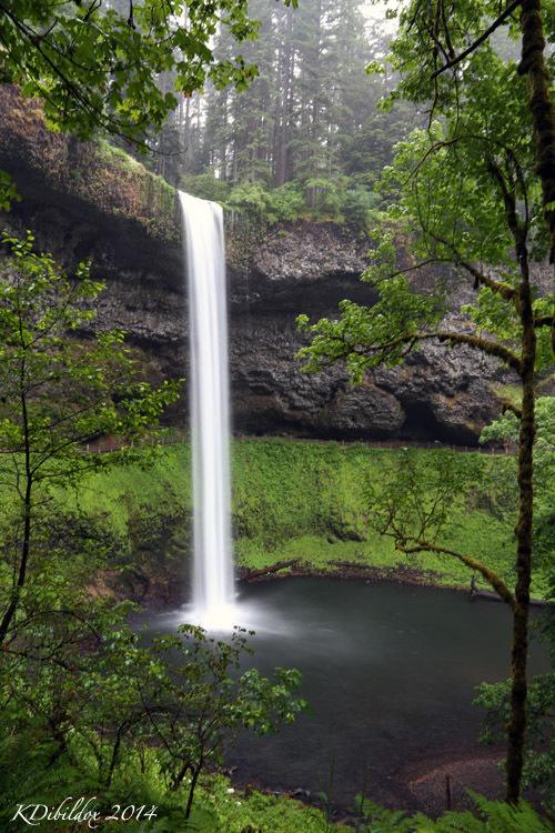 South Falls, at Silver Falls State Park