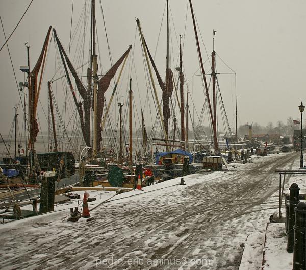 Snow Maldon