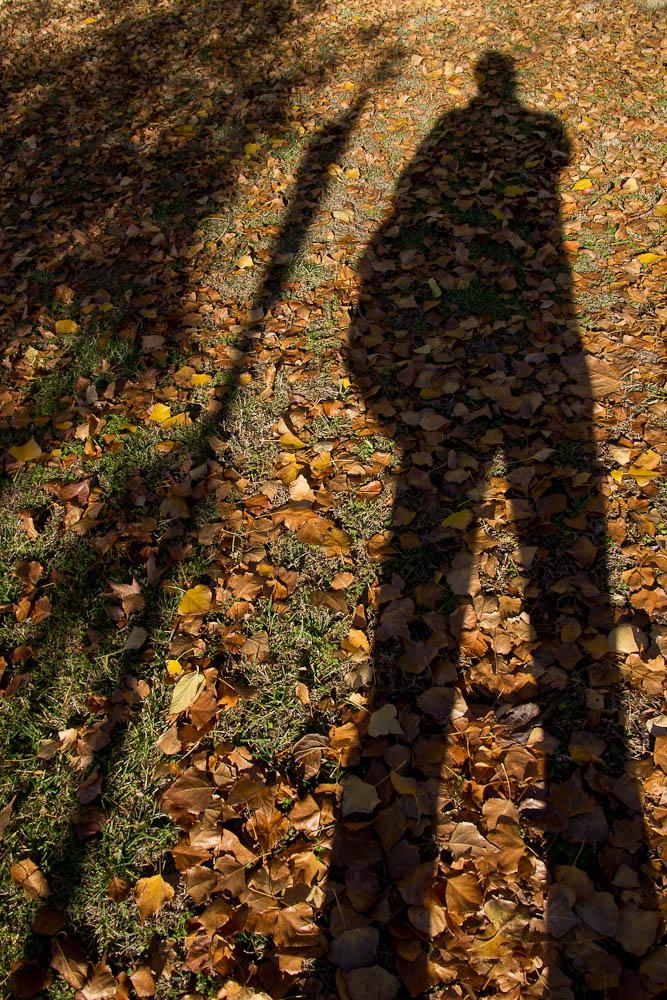 autumn autoretrato