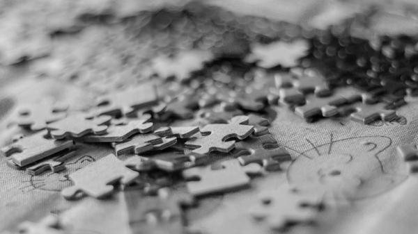puzzle cat b&n macro