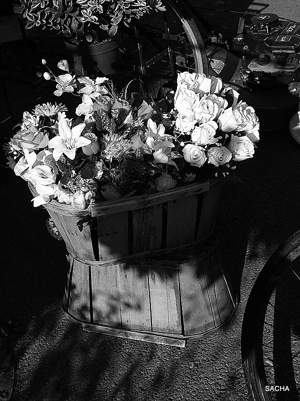 Le panier de fleurs .........