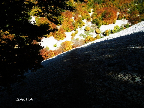 Draille en automne Ventoux