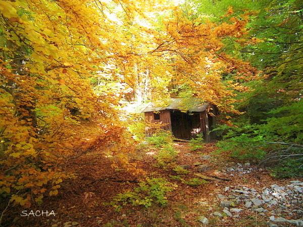 Cabane dans le Vallon des Pointes Ventoux