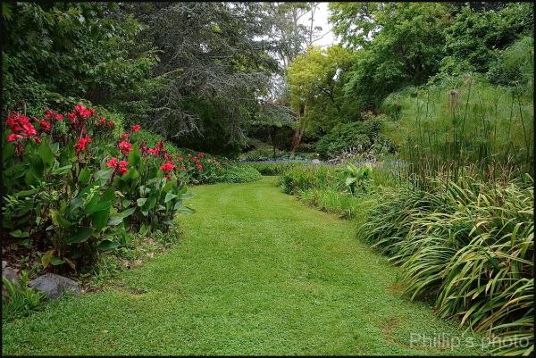 The Bird Gardens. #36