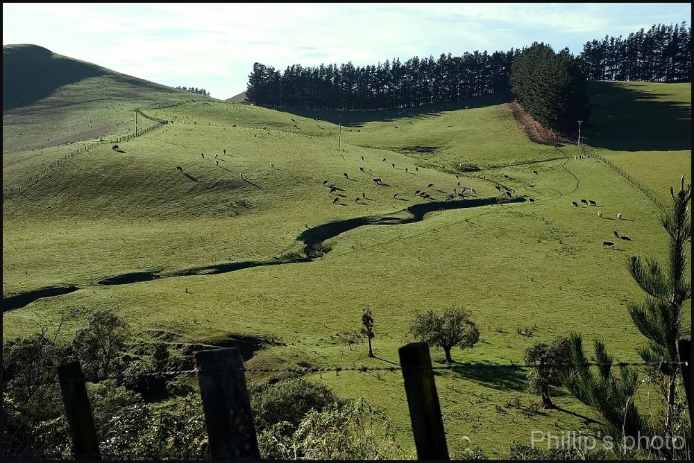 """Rolling Landscape"""