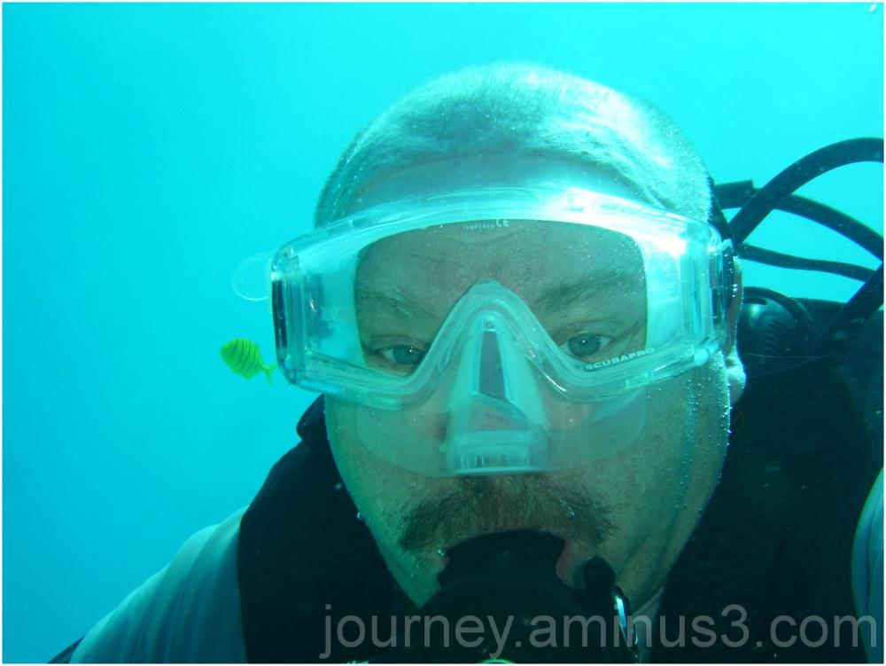 Puerto Galera Diving