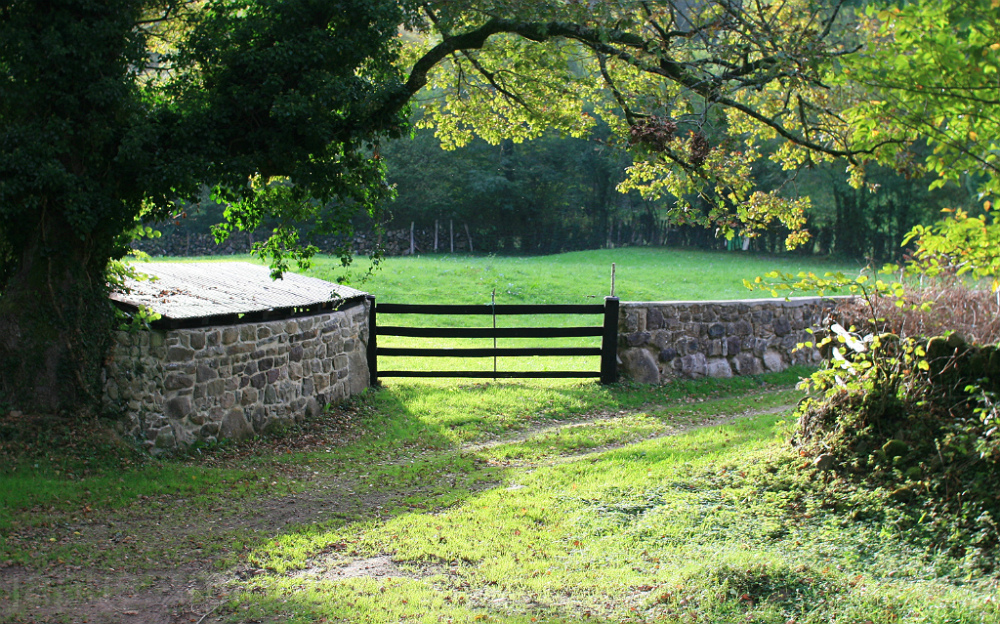 Parcela rústica con cercaado de piedra