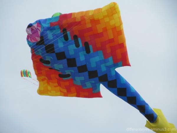 Rosebud Kite Festival 2014