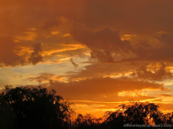 Dromana Hills autumn skies