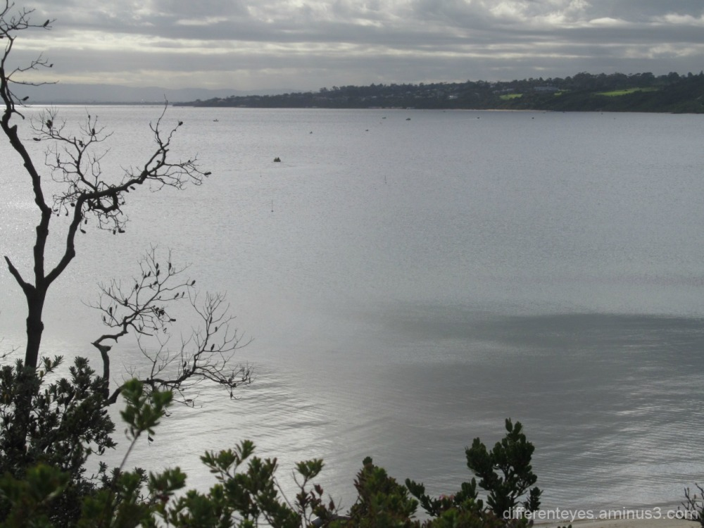 View of Mount Eliza from Schnapper Point