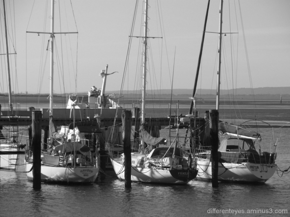 monochrome boats at Hastings marina