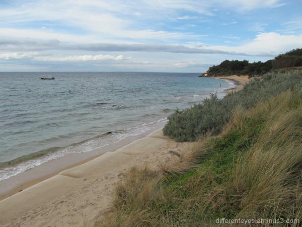 view of Portsea Beach