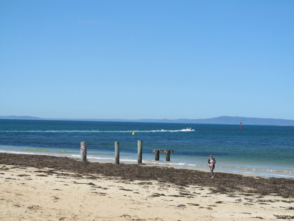Queenscliff beach view