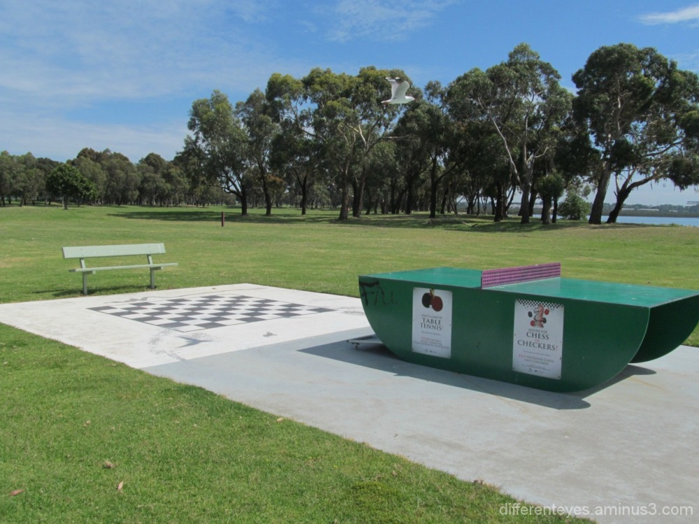 outdoor games at a Hastings park