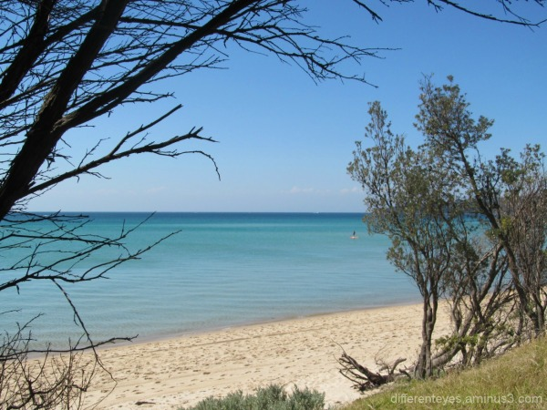 view from Dromana beach