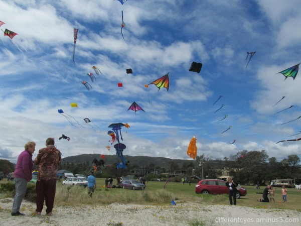 2015 Kite Festival at Rosebud