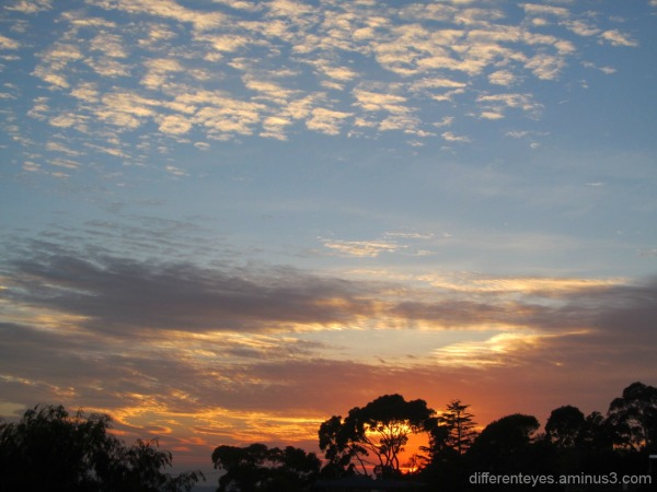 autumn morning skies in the Dromana Hills