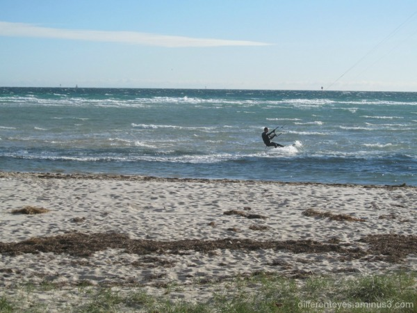Rosebud beach view of a windsurfer