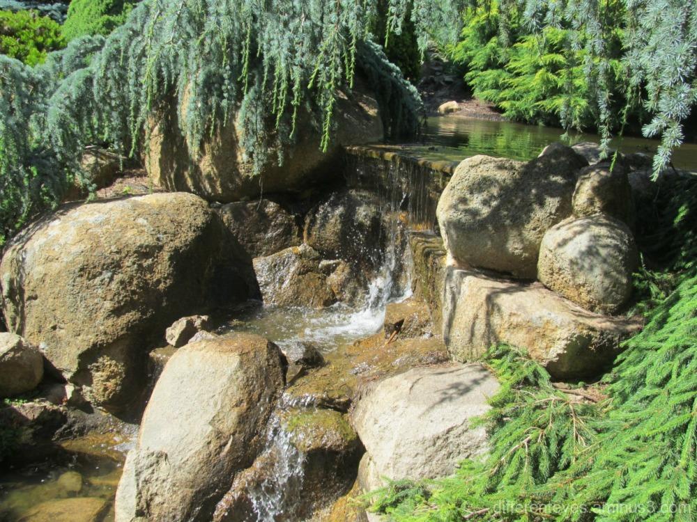 Enchanted Adventure Garden