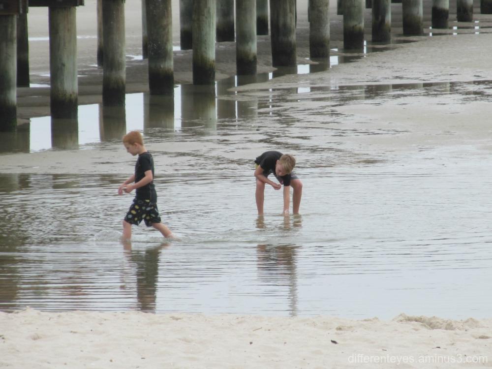 reflections at Rosebud beach