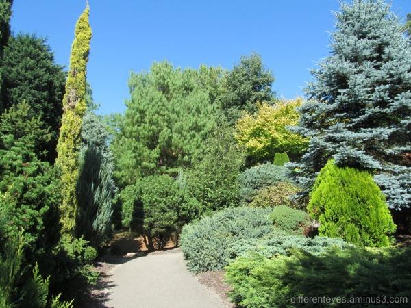 wintry Enchanted Adventure Garden at Arthurs Seat
