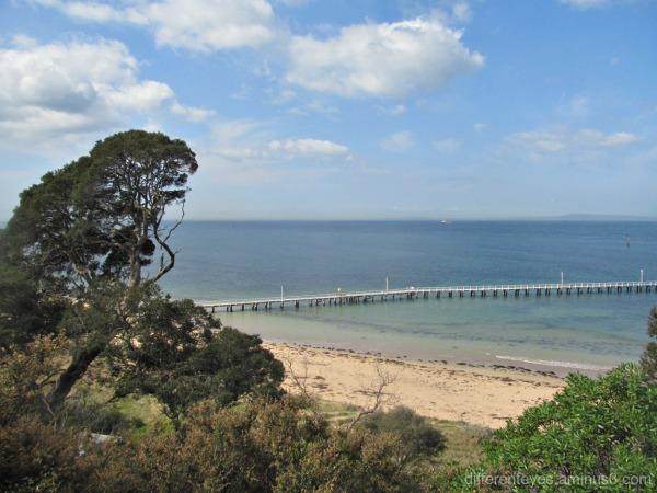 view from Queenscliff of a pier