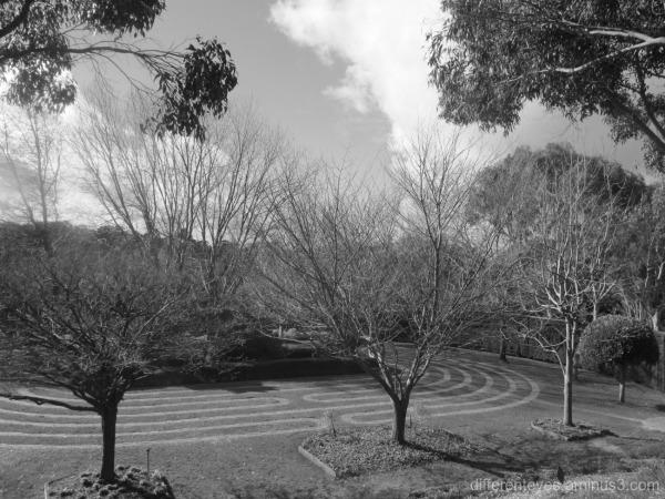 grass maze at the Enchanted Garden, Arthurs Seat