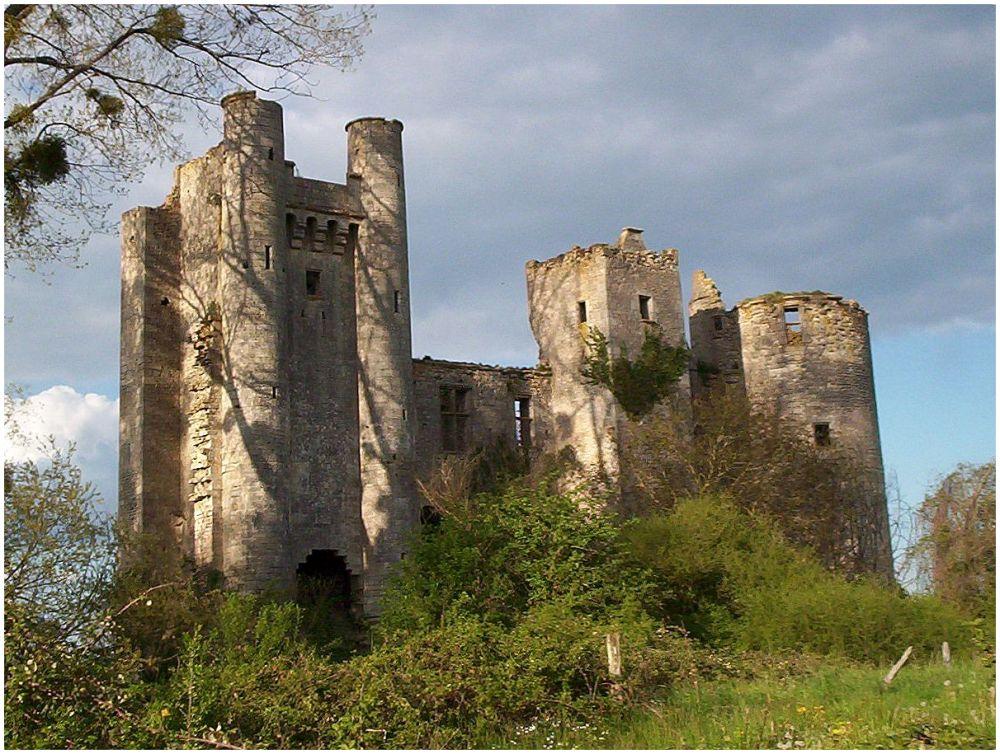 chateau en ruine dans la Nièvre - France