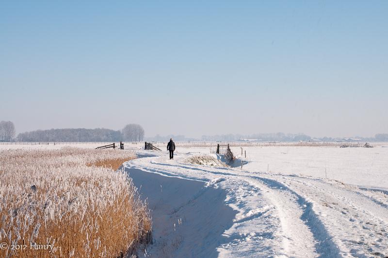 sneeuw snow pad path