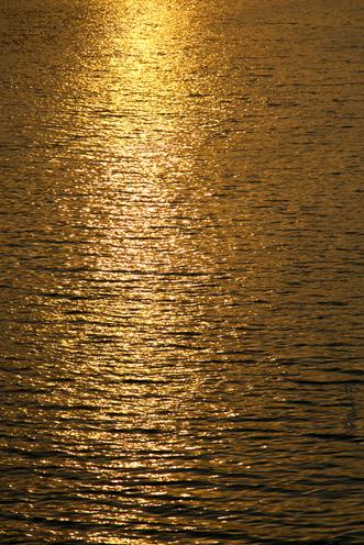 golden reflect